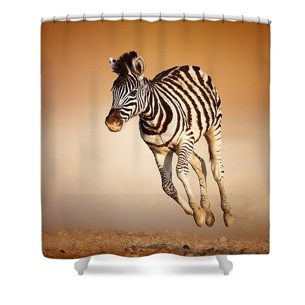 Zebra Calf Running Shower Curtain