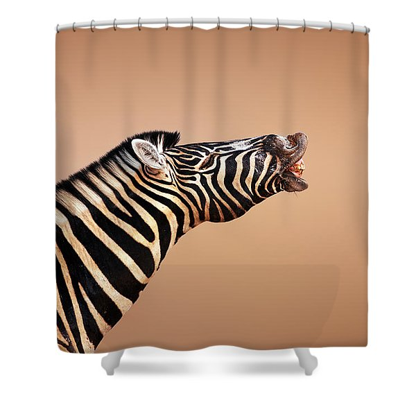 Zebra Calling Shower Curtain