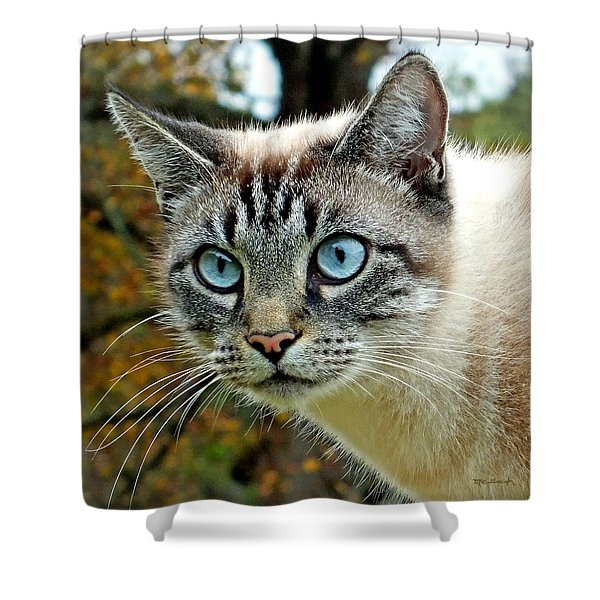 Zing The Cat Upclose Shower Curtain