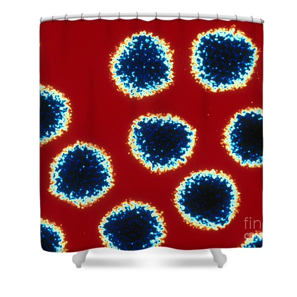 Adenovirus Tem Shower Curtain
