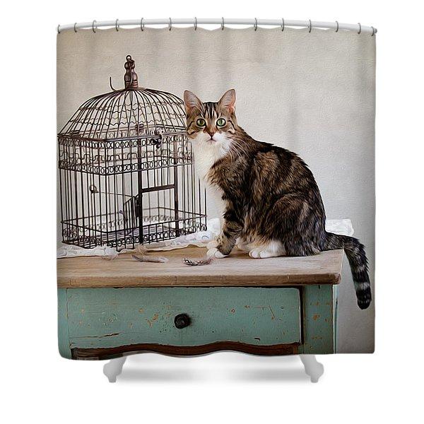 Cat And Bird Shower Curtain