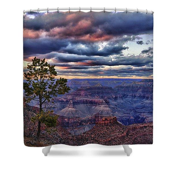 Evening Light Shower Curtain