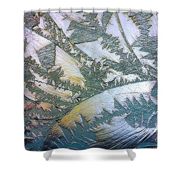 Glass Designs Shower Curtain
