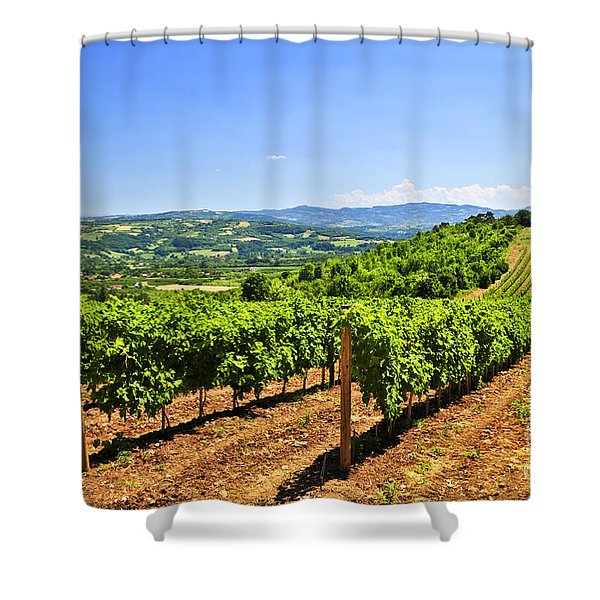 Landscape With Vineyard Shower Curtain
