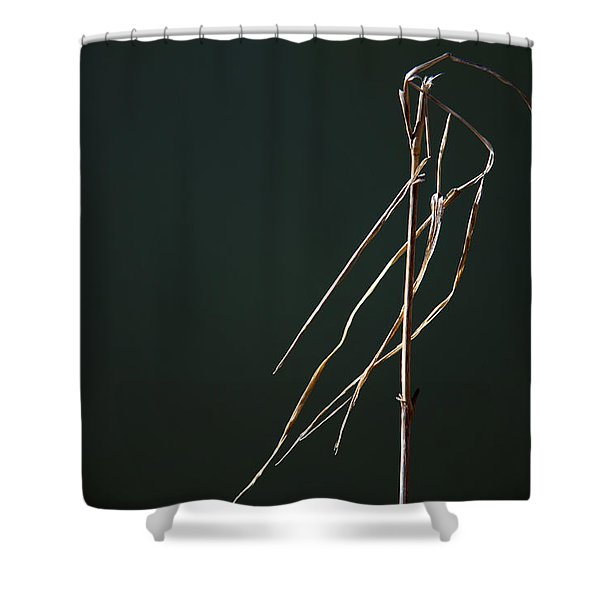 Left Behind Shower Curtain