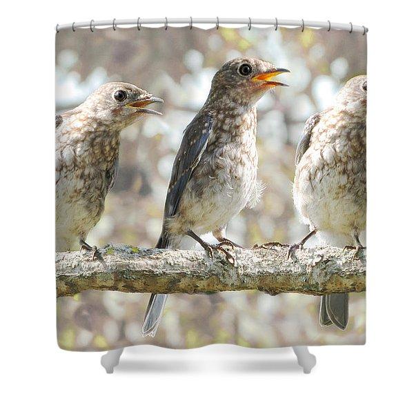 Sing Sing Sing Shower Curtain
