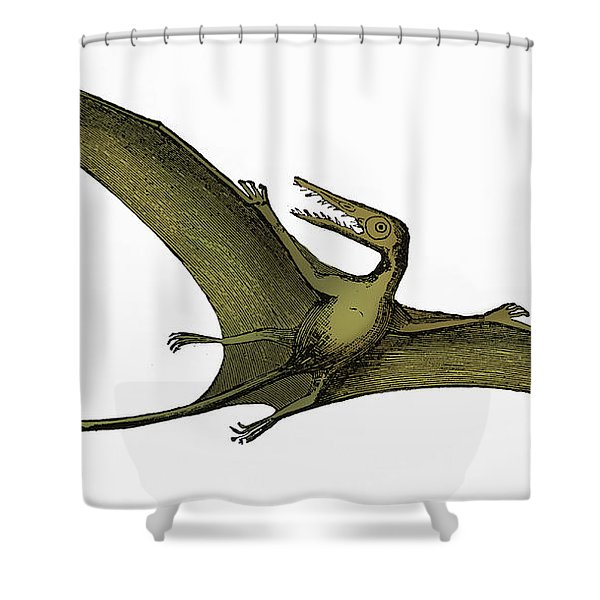 Pterodactyl Extinct Flying Reptile Shower Curtain