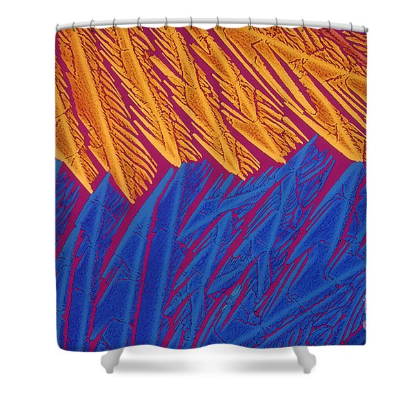 Acetylcholine Shower Curtain