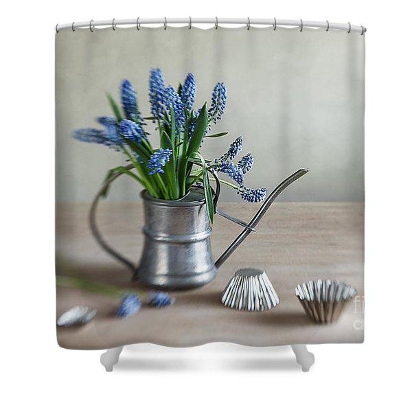 Still Life With Grape Hyacinths Shower Curtain