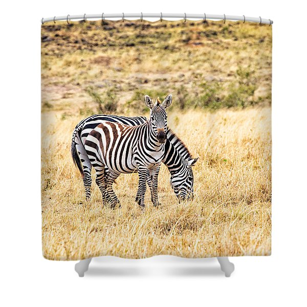 Shower Curtain featuring the photograph Zebras In The Masai Mara by Perla Copernik