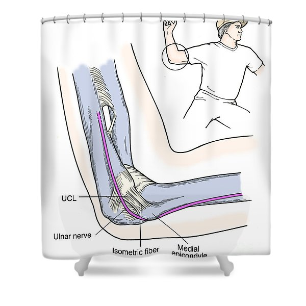 Illustration Of Elbow Ligaments Shower Curtain