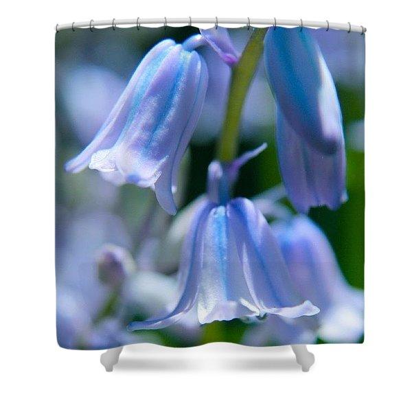 Purple Blue Bells Shower Curtain