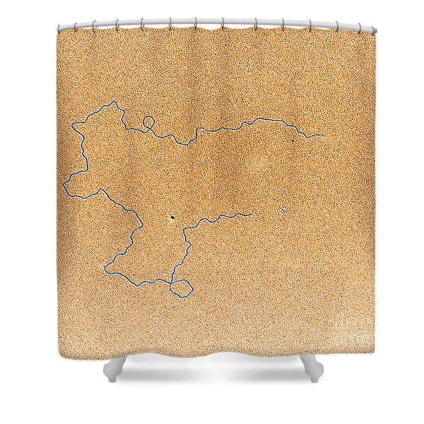 Tem Of Dna Shower Curtain