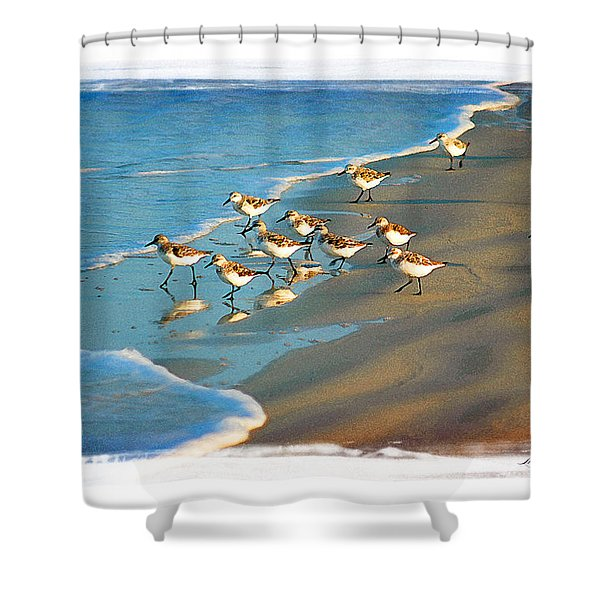 A Bevy Of Pipers Shower Curtain
