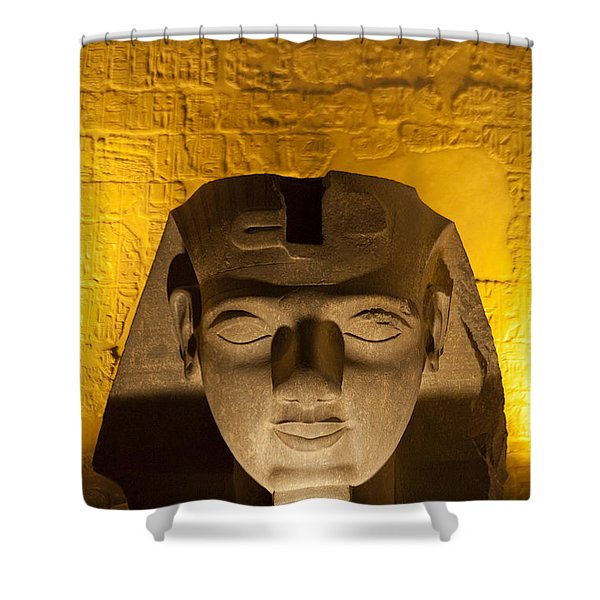 A Close View Of A Head Of A Sphinx Shower Curtain