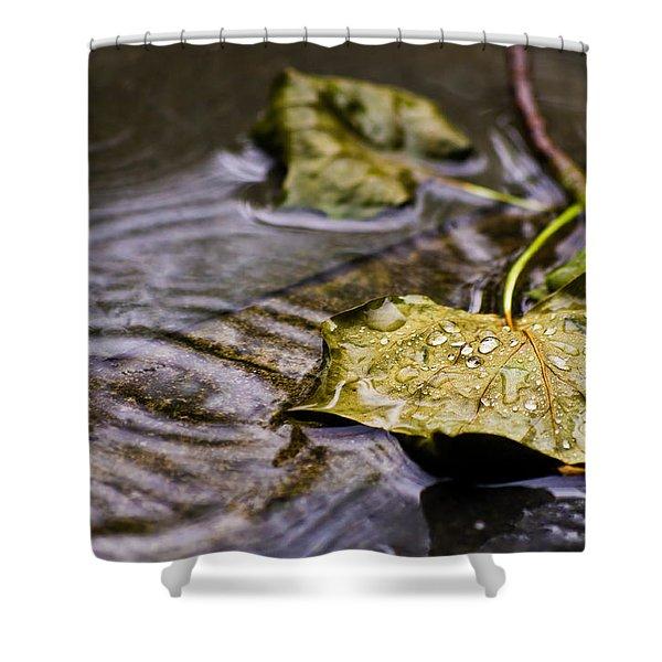 A Leaf In The Rain Shower Curtain