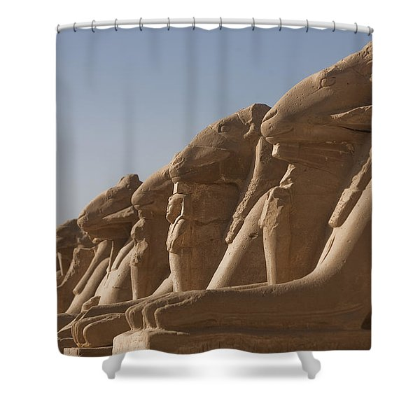A Line Of Sphinxes With Rams Heads Line Shower Curtain