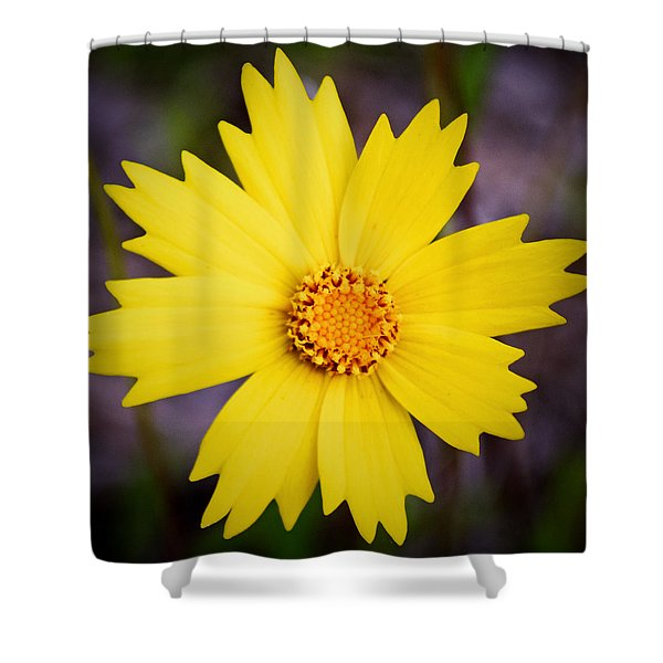 A Little Sunshine Shower Curtain
