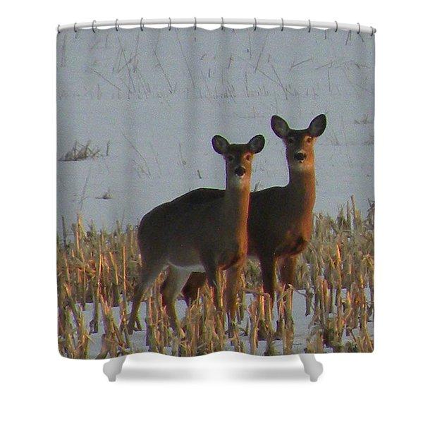 A Perfect Pair Shower Curtain