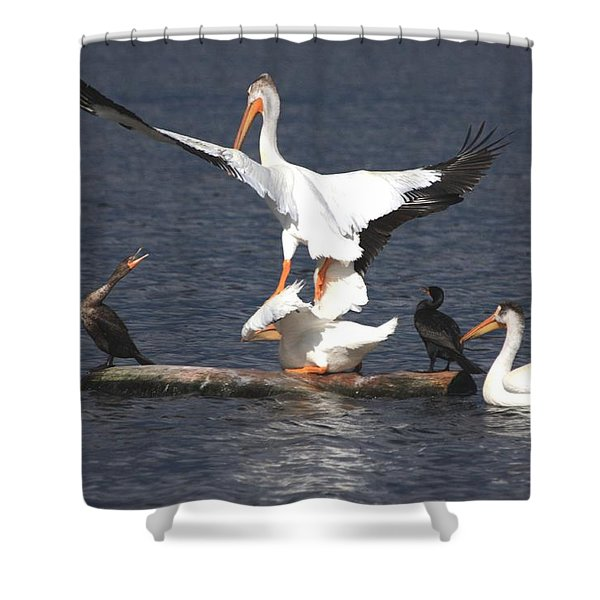 A Step Ahead Shower Curtain