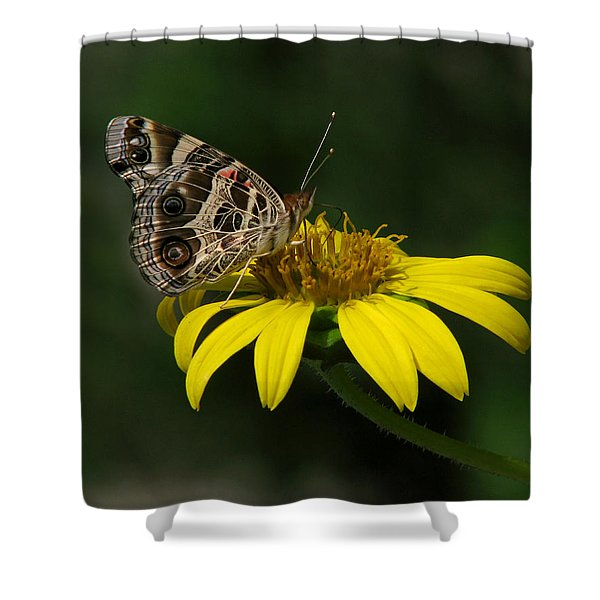 American Lady Shower Curtain