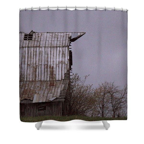 An American Pointer Shower Curtain