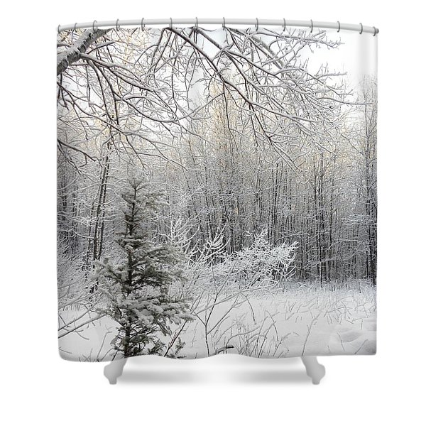And More Snow Shower Curtain