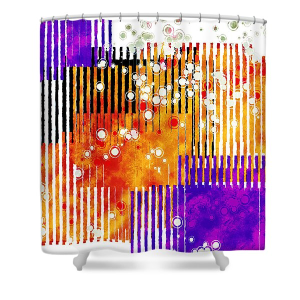 Art Deco Style Patterns Shower Curtain