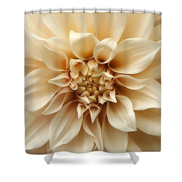 Arundel Blossom Shower Curtain