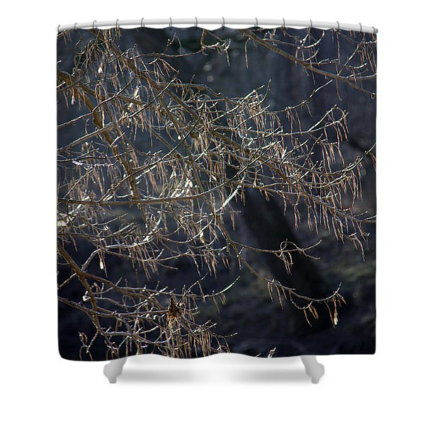Back Woods Blue Shower Curtain
