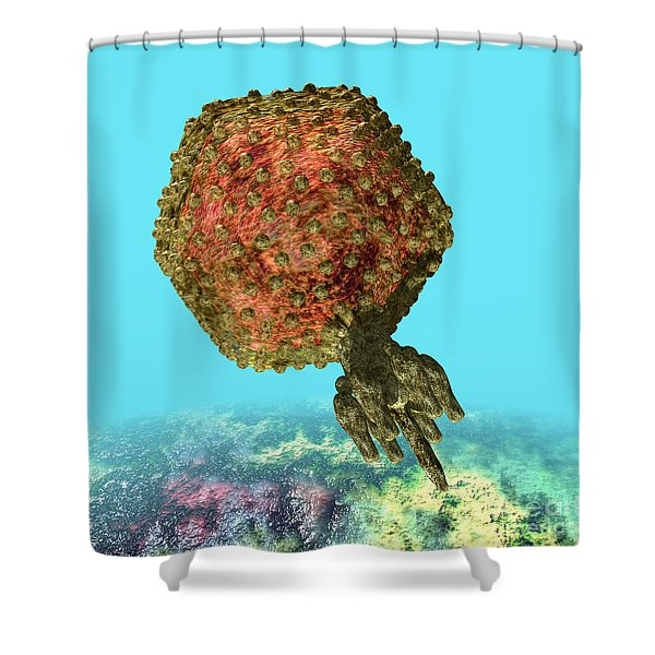 Bacteriophage P22 Shower Curtain