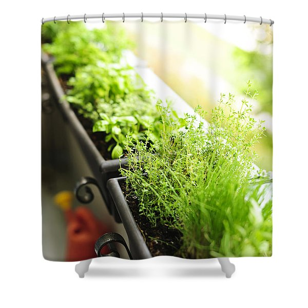 Balcony Herb Garden Shower Curtain