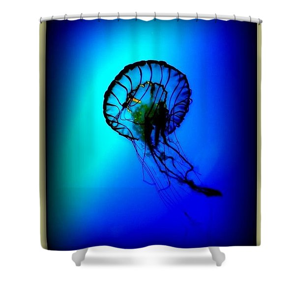 Baltimore Belle  Shower Curtain