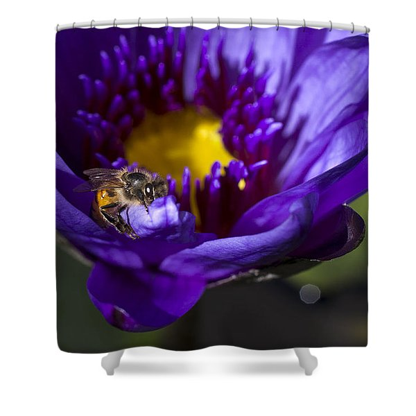 Bee Hug Shower Curtain