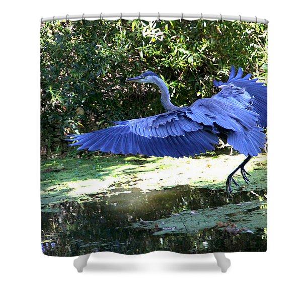 Big Blue In Flight Shower Curtain