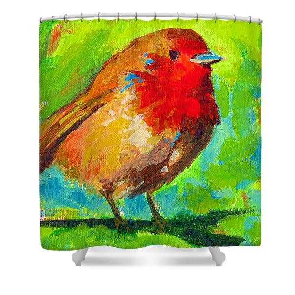 Birdie Bird - Robin Shower Curtain