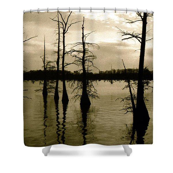 Black Bayou 8 Shower Curtain