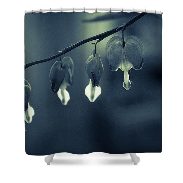 Bleeding Heart Shower Curtain