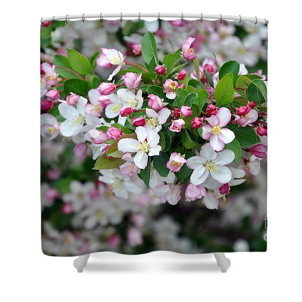 Blossoms On Blossoms Shower Curtain