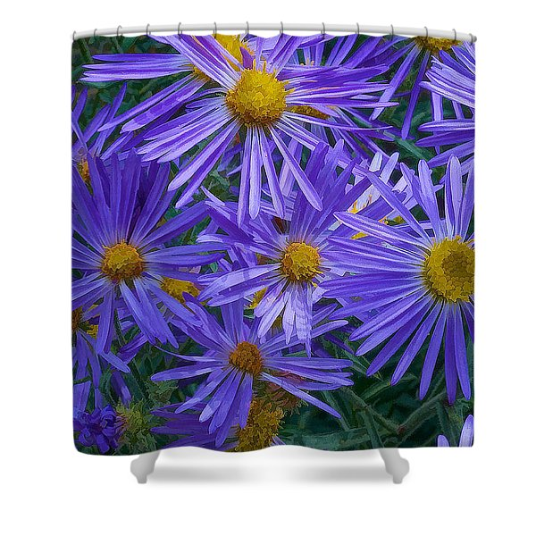 Blue Asters Shower Curtain