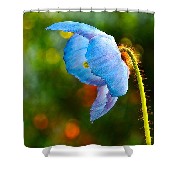 Blue Poppy Dreams Shower Curtain