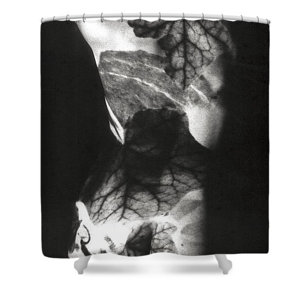Shower Curtain featuring the photograph Body Projection Woman - Duplex by Silva Wischeropp