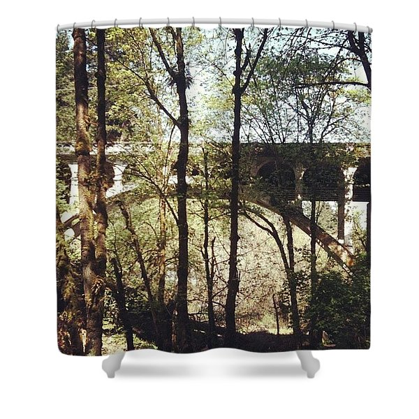 Bridge Over Lake Oswego Creek Shower Curtain