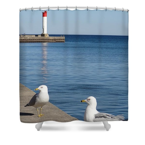 Bronte Lighthouse Gulls Shower Curtain