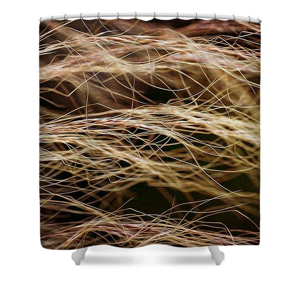 Bronzed Grasses. Shower Curtain