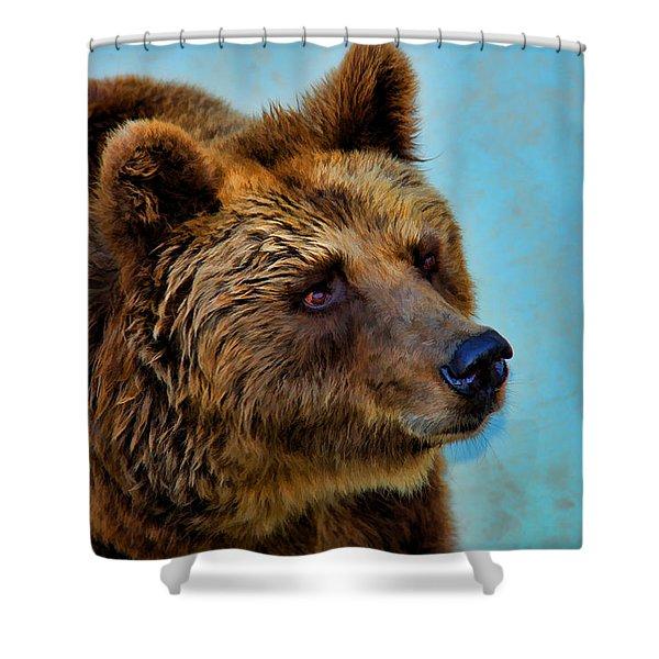 Brown Bear 203 Shower Curtain