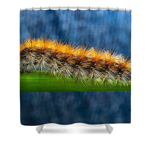 Butterfly Caterpillar Larva On The Stem Shower Curtain