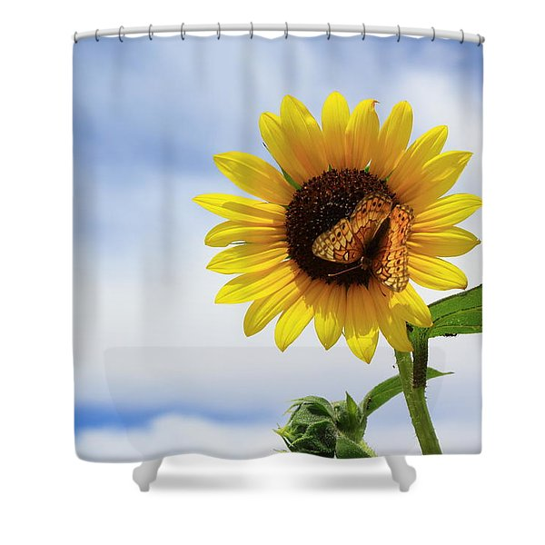 Butterfly On A Sunflower Shower Curtain