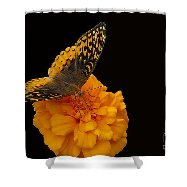 Butterfly Visitor Shower Curtain
