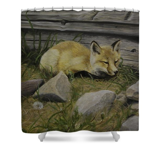 By The Den Shower Curtain
